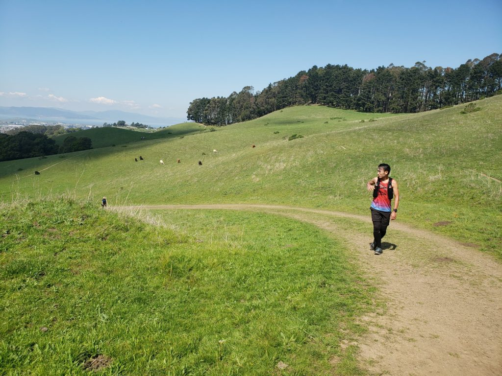 Fastest Known Time: From Stinson, To Tam Summit, To Diablo Summit 61