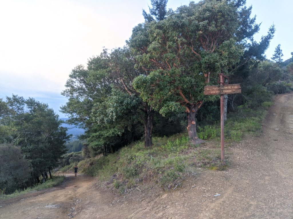 Fastest Known Time: From Stinson, To Tam Summit, To Diablo Summit 32
