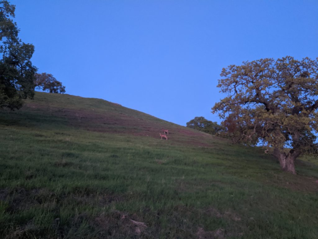 Fastest Known Time: From Stinson, To Tam Summit, To Diablo Summit 100