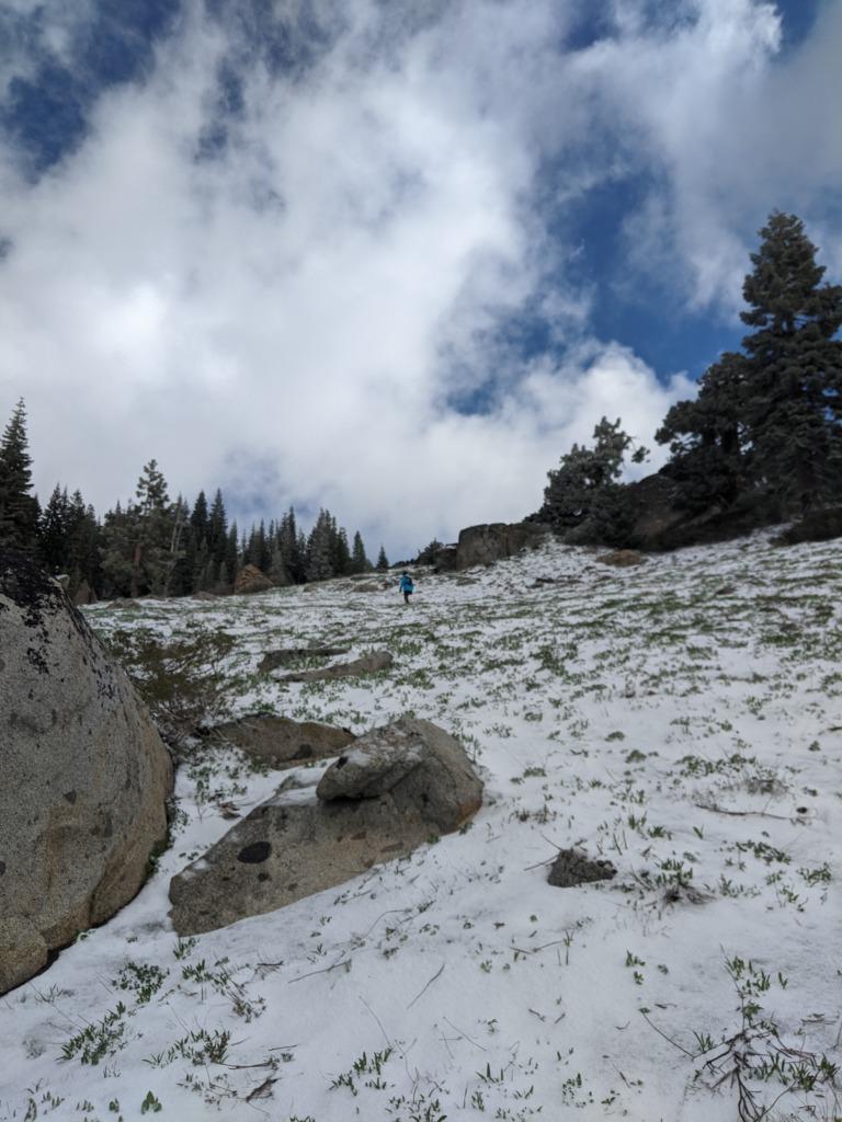 Journal: Sunday, June 7, 2020 // Partial Castle Peak Loop 50