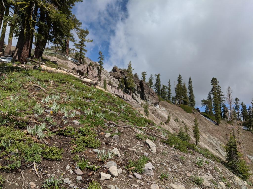 Journal: Sunday, June 7, 2020 // Partial Castle Peak Loop 70