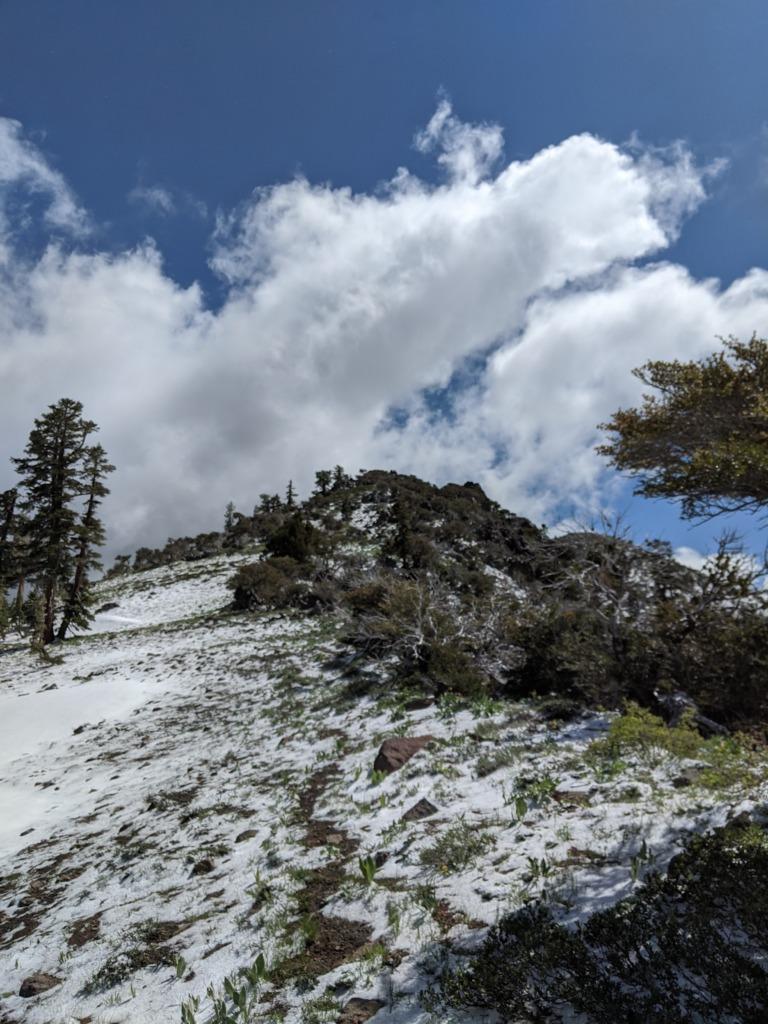 Journal: Sunday, June 7, 2020 // Partial Castle Peak Loop 73