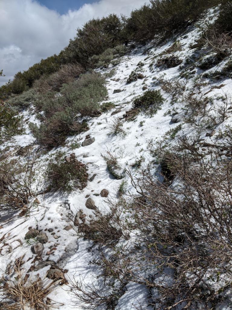Journal: Sunday, June 7, 2020 // Partial Castle Peak Loop 77