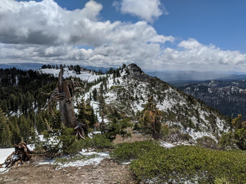 Journal: Sunday, June 7, 2020 // Partial Castle Peak Loop 82