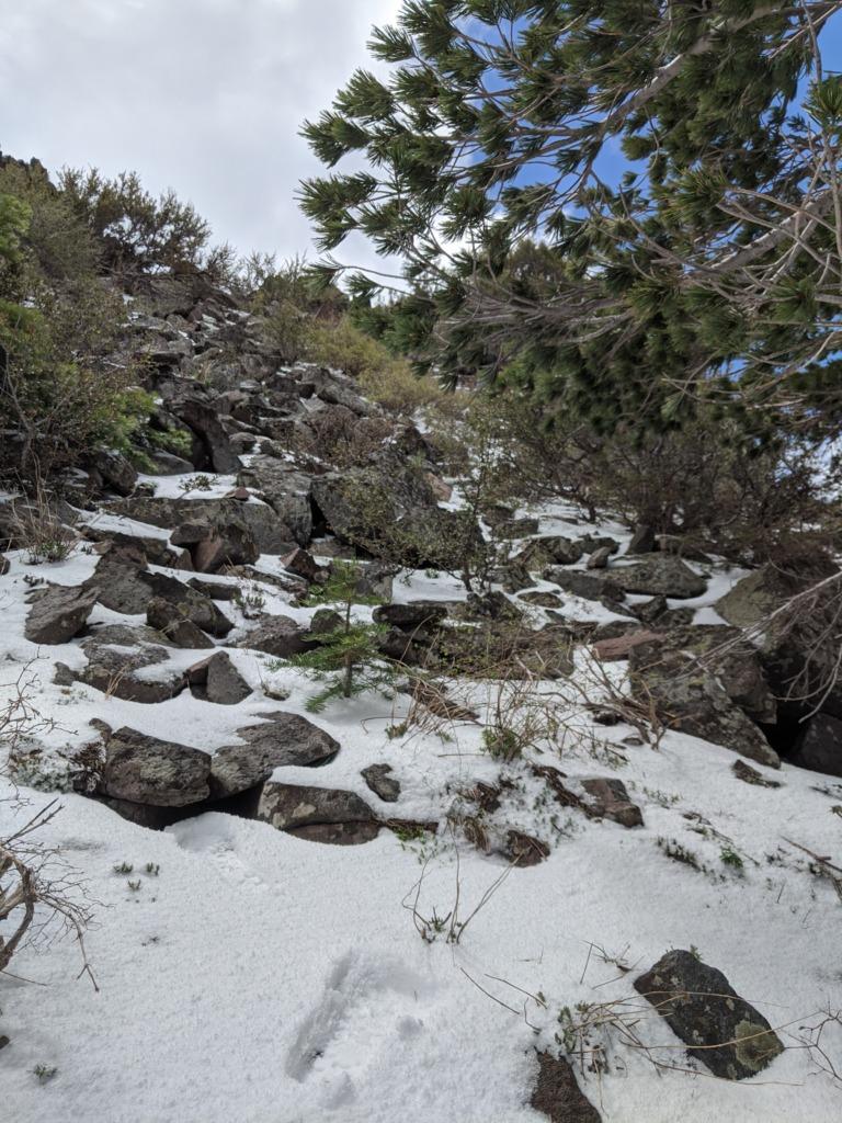 A Partial Castle Peak Loop 83