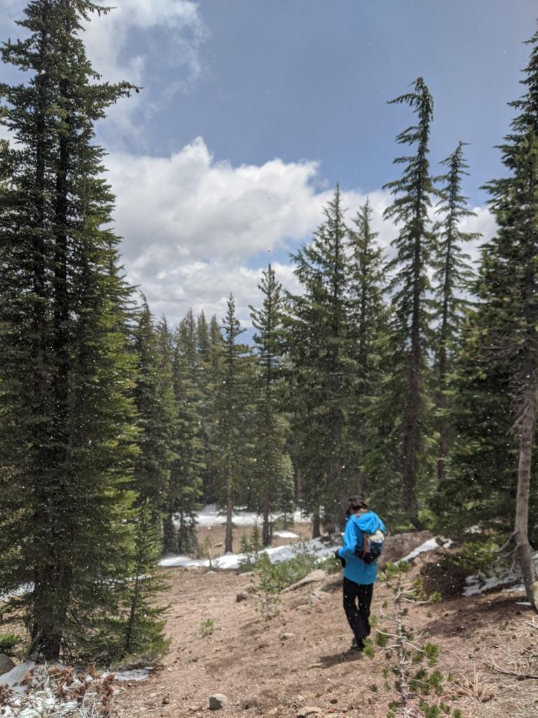 Journal: Sunday, June 7, 2020 // Partial Castle Peak Loop 89