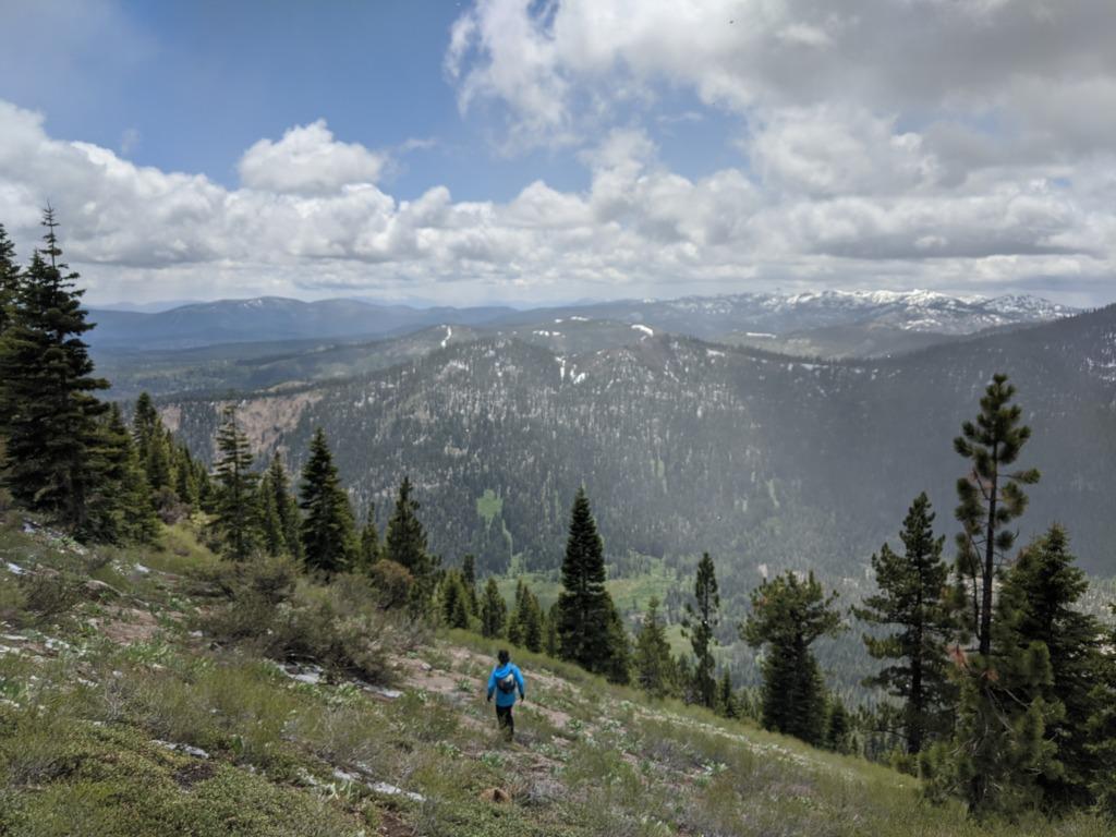 Journal: Sunday, June 7, 2020 // Partial Castle Peak Loop 91
