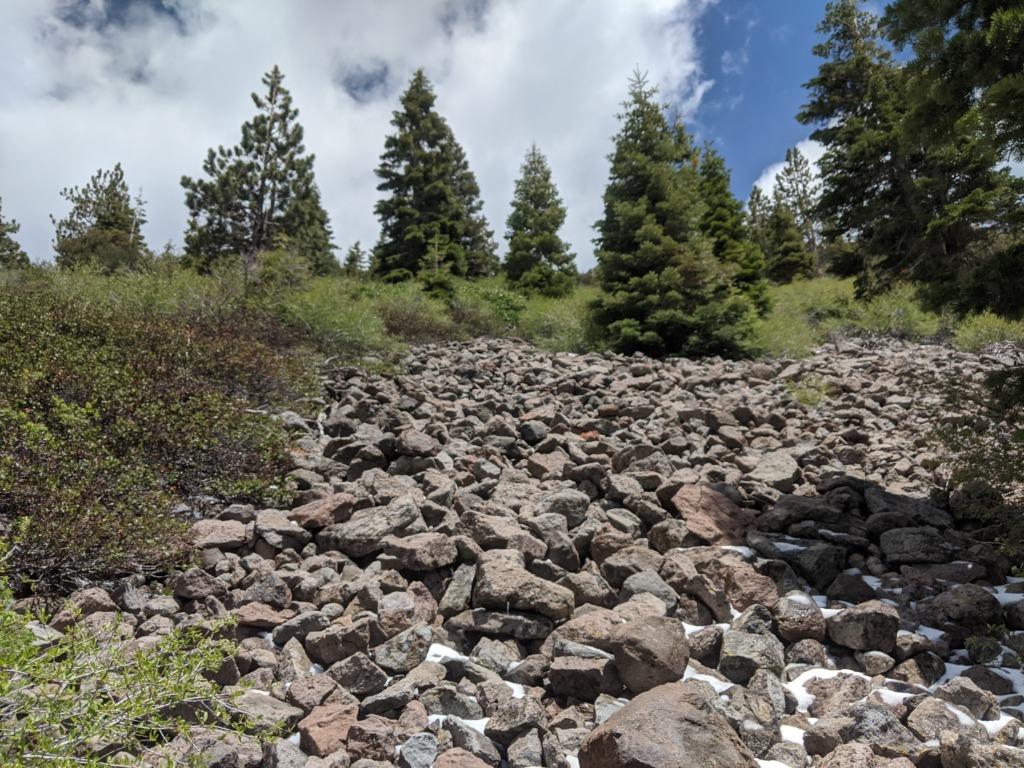 Journal: Sunday, June 7, 2020 // Partial Castle Peak Loop 94