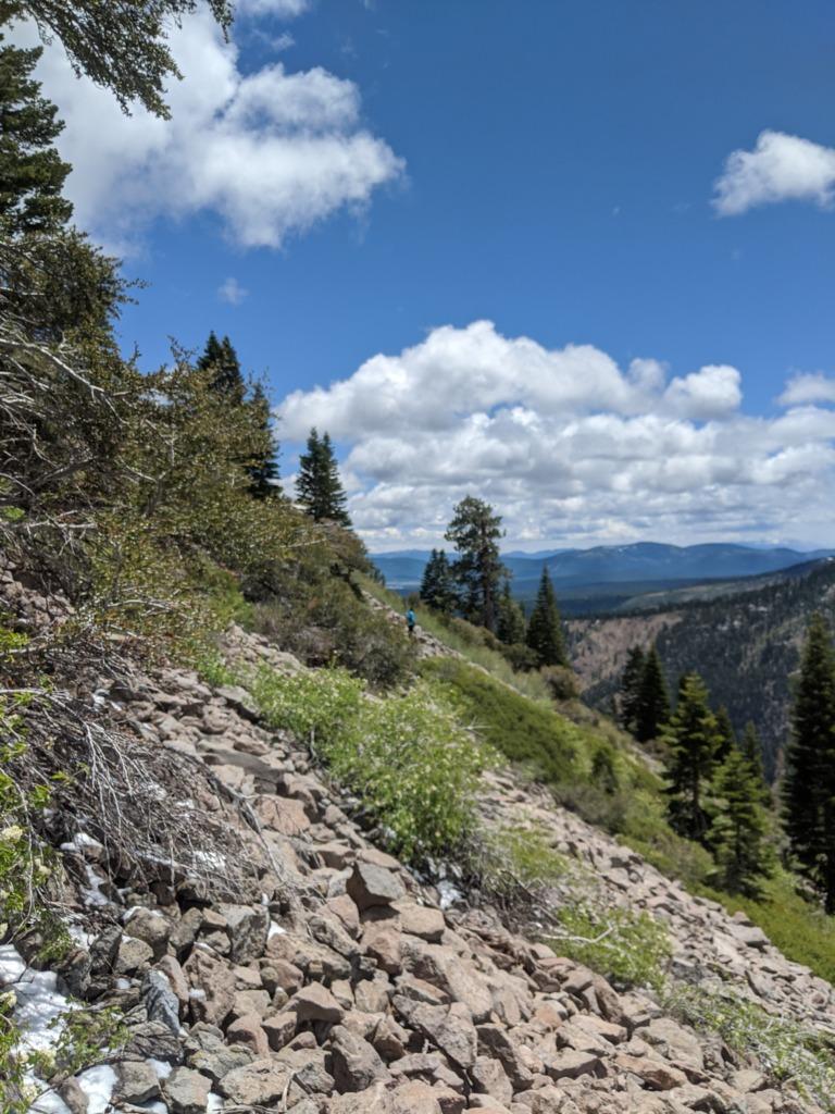 Journal: Sunday, June 7, 2020 // Partial Castle Peak Loop 98
