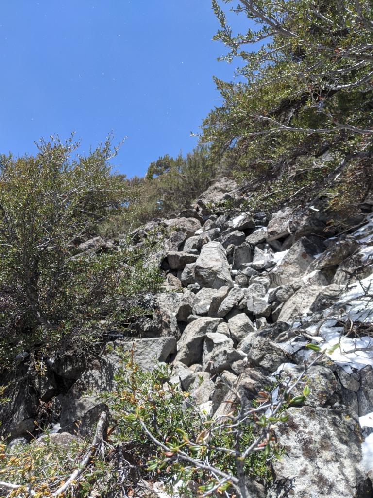 Journal: Sunday, June 7, 2020 // Partial Castle Peak Loop 99