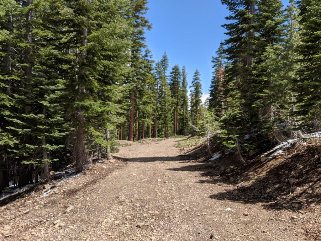 Journal: Sunday, June 7, 2020 // Partial Castle Peak Loop 108