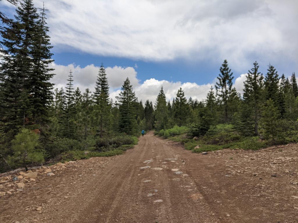 Journal: Sunday, June 7, 2020 // Partial Castle Peak Loop 111