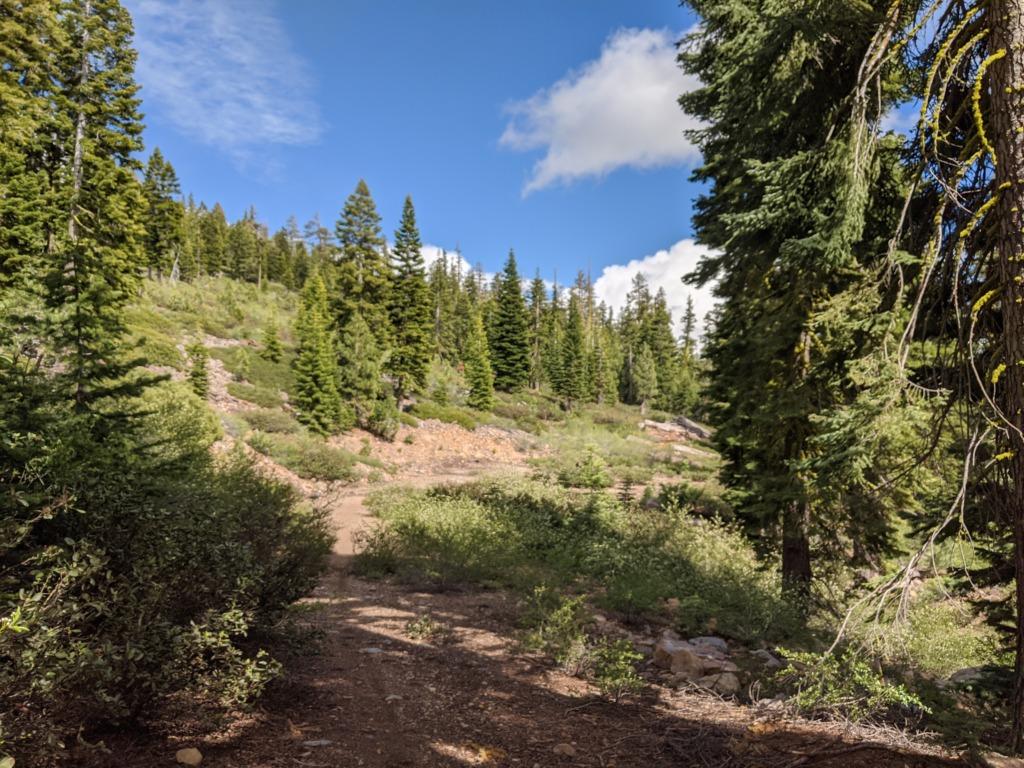 Journal: Sunday, June 7, 2020 // Partial Castle Peak Loop 114