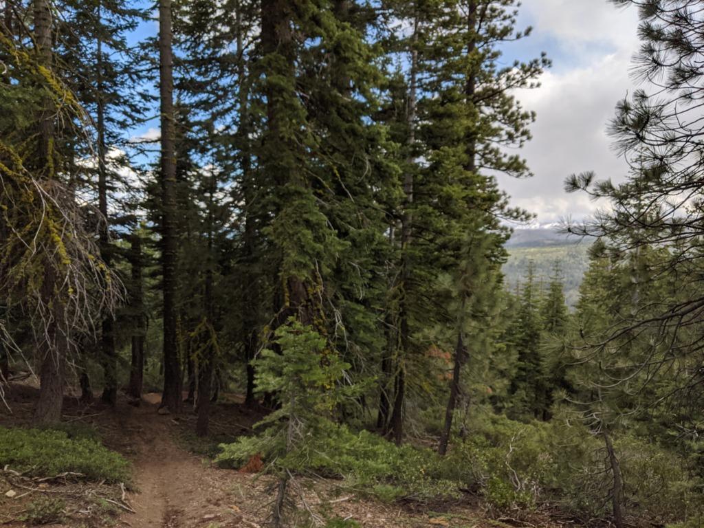 Journal: Sunday, June 7, 2020 // Partial Castle Peak Loop 117